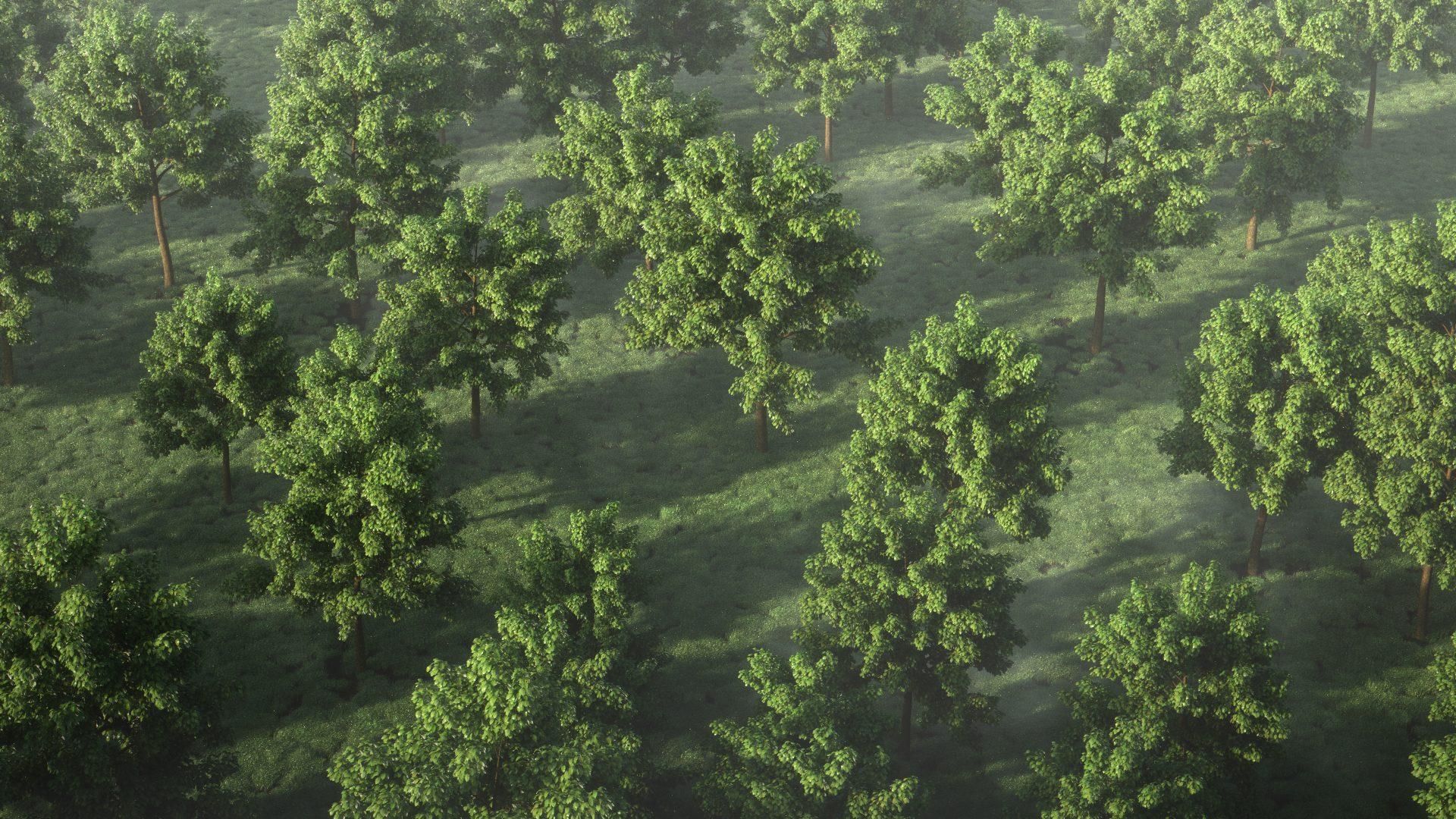+100 Modèles d'arbres 2D et 3D à Télécharger Gratuitement